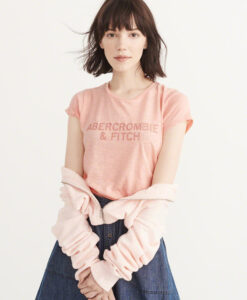 Blusa Abercrombie & Fitch Embroidered Logo Tee Pink