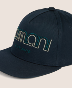 Dual Line Embroidered Logo Hat blue